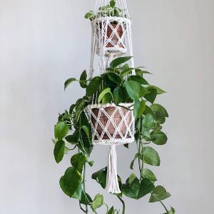 eco friendly gift sets